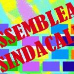 Assemblea sindacale-Liceo Meda-